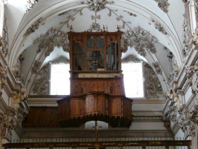 8- Organo 2